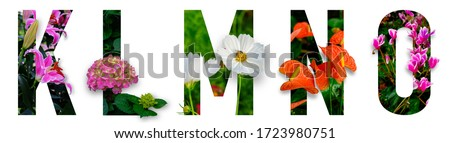 Floral letters. The letters K, L, M, N, O are made from colorful flower photos. A collection of wonderful flora letters for unique spring decorations and various creation ideas. clipping path