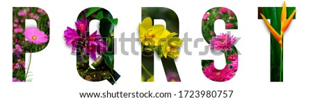 Floral letters. The letters P, Q, R, S, T are made from colorful flower photos. A collection of wonderful flora letters for unique spring decorations and various creation ideas. clipping path