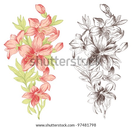 Floral ornament in baroque style. Hand drawn roses.