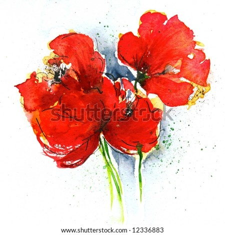Floral painted  poppy illustration on white background. Ink and watercolor painting. Art is created and painted by the photographer.
