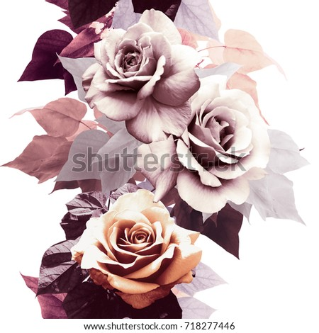 floral pattern with roses #718277446
