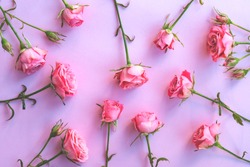 Floral pattern with roses flowers on pink background. Flat lay, top view. Flowers background