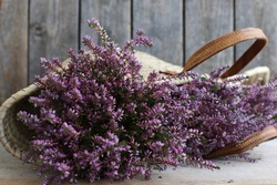 Floral scene with fresh purple heather in vintage, authentic palm, grass basket, french country decor, farmhouse , provencal home on dark wooden weathered background, daylight, original photo