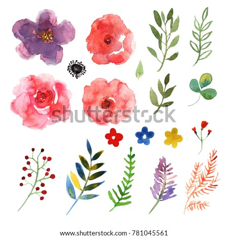 Floral set. Collection with isolated flowers, drawing watercolor. Design for invitation, wedding or greeting cards #781045561