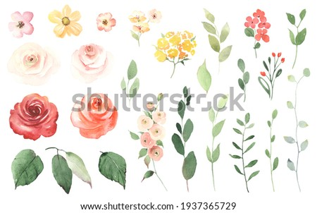 Floral set with simple roses, small colorful flowers, green leaves and branches. Watercolor collection design elements isolated on white background for invitation, greeting cards, date, decorations.