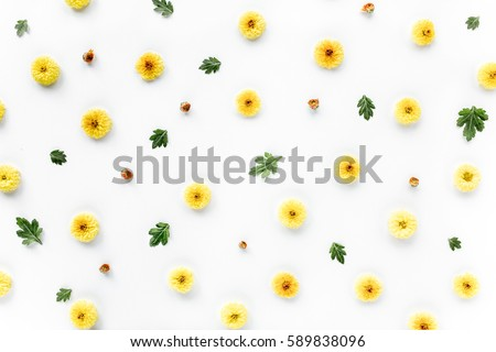 floral texture with yellow chrysanthemum flower and green branches. Flat lay, top view