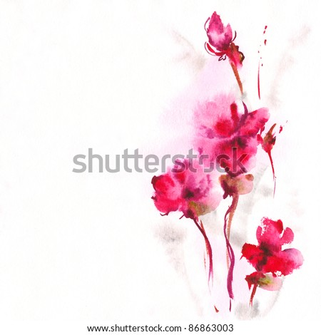 floral watercolor illustration