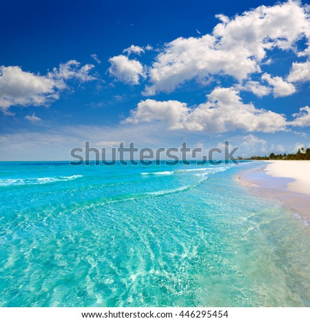 Florida Fort Myers beach clear water in USA