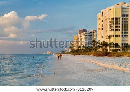 florida gulf coast beach at naples in late afternoon