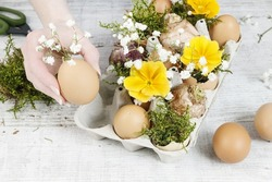 Florist at work: How to make simple easter floral arrangement with ordinary paper egg box, primula flowers, gypsophila paniculata twigs and moss. Step by step, tutorial.