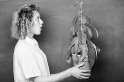 Florist concept. Botany and biology lesson. Botany education. Botanical expert. Botany is about plants flowers and herbs. Woman chalkboard background carry plant in pot. Take good care plants.