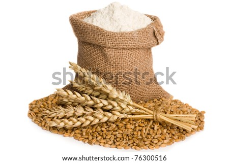 Flour in small burlap sack and wheat seed