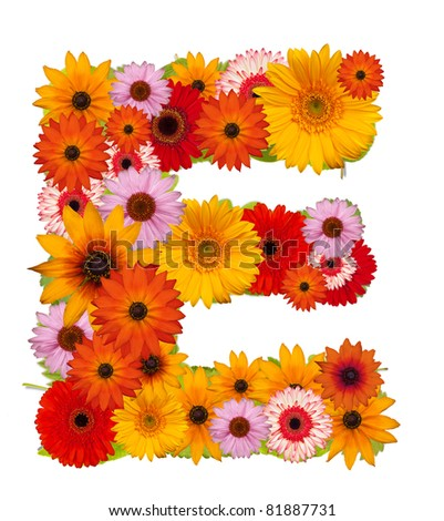 Flower alphabet isolated on white. Letter E