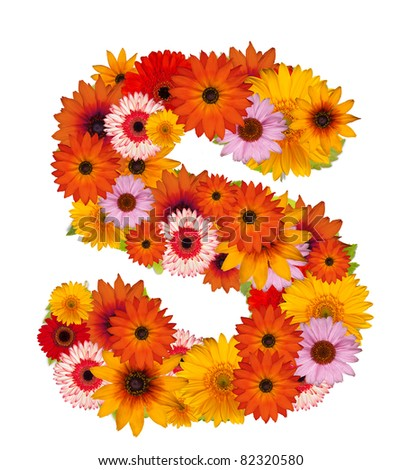 S Alphabet In Flowers Flower alphabet isolated on