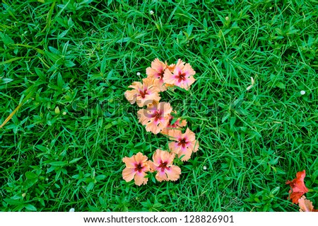 S Alphabet In Flowers Flower Alphabet: Letter S. Letters made of flowers on green grass ...