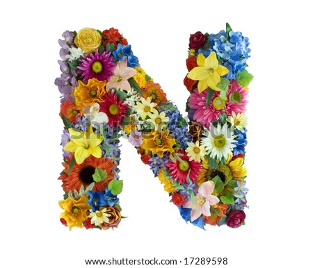 Flower Alphabet - N - stock photo