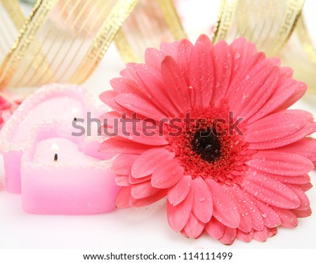 Flower and candle