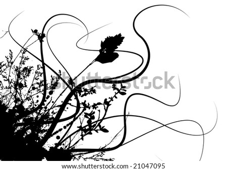 black and white flowers photography. stock photo : flower and ink