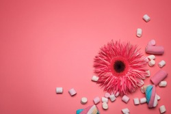 Flower and marshmallows on the pink background, with free space for text.