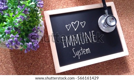 Flower and Stethoscope on wood  with immune system word as medical concept #566161429