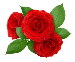 Flower arrangement made with roses isolated on a white. Clip art image for design.