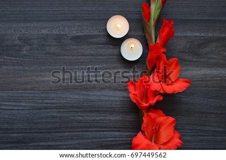 Flower Background #697449562