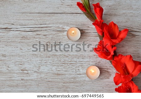 Flower Background #697449565