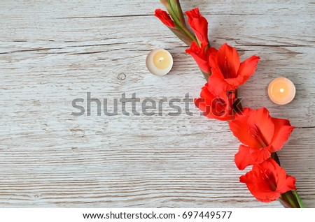Flower Background #697449577