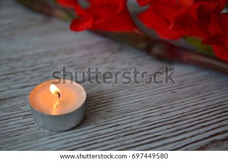Flower Background #697449580