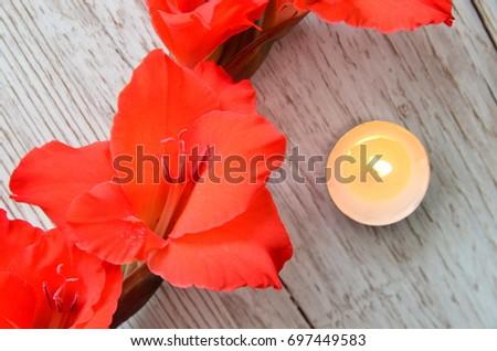Flower Background #697449583