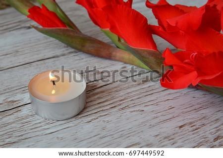 Flower Background #697449592