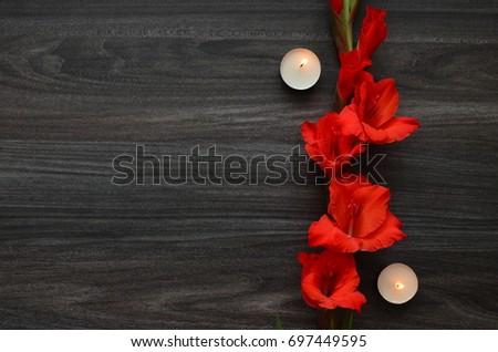 Flower Background #697449595