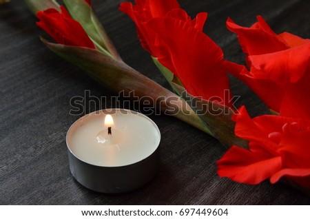 Flower Background #697449604