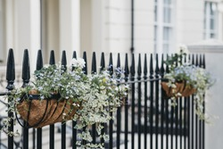 Flower baskets on a fence in front of a house, selective focus, home ownership concept.