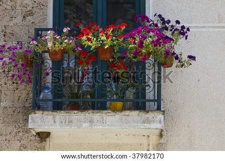 Flower baskets on window