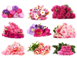 Flower bouquets isolated on white