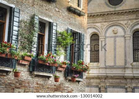 Flower boxes below a window in Venice, Italy