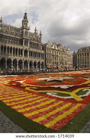 Flower Carpet at Brussels' Grand Place