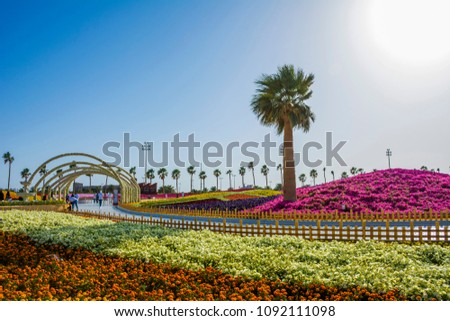 Flower carpet in Yanbu flower show, The Yanbu Flower Festival is one of the biggest festivals in Saudi Arabia. In the 2017 edition of it they managed to make the largest carpet of flowers/plants
