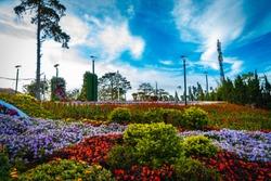 Flower city, Dalat