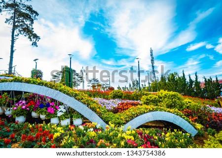 Photo of  Flower city, Dalat