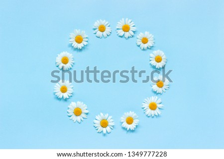Flower composition. Frame floral round wreath of flowers chamomile on blue background. Mock up Top view. #1349777228
