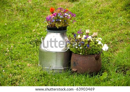 Flower Containers on Lawn