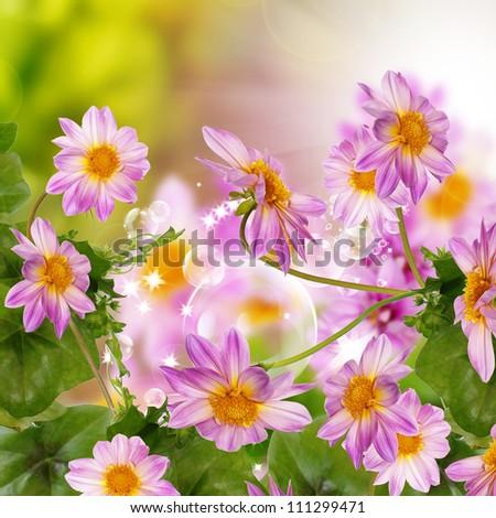 Flower exotic beautiful design