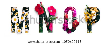 Photo of Flower font Alphabet m, n, o, p, made of Real alive flowers with Precious paper cut shape of letter. Collection of brilliant flora font for your unique decoration in spring, summer & many concept idea