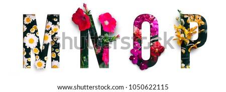 flower font alphabet m  n  o  p ...
