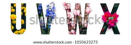 Photo of Flower font Alphabet u, v, w, x, made of Real alive flowers with Precious paper cut shape of letter. Collection of brilliant flora font for your unique decoration in spring, summer & many concept idea