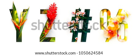 Photo of Flower font Alphabet y, z, #, %, made of Real alive flowers with Precious paper cut shape of letter. Collection of brilliant flora font for your unique decoration in spring, summer & many concept idea