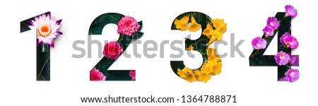Flower font number 1, 2, 3, 4 Create with real alive flowers and white background cut shape of Number. Collection of brilliant bloom flora font for your unique text, typography with many concept ideas #1364788871