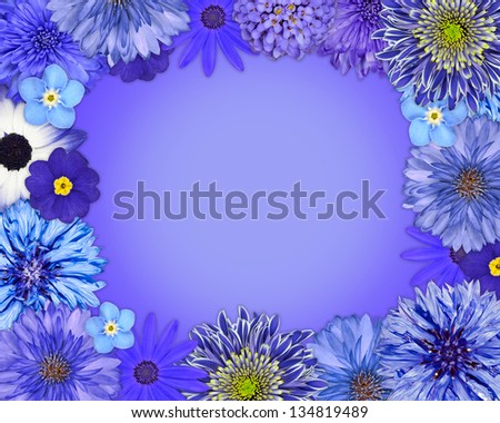 Flower Frame with Blue, Purple Flowers Isolated on Blue Background. Daisy, Chrysanthemum, Cornflower, Dahlia, Iberis, Primrose